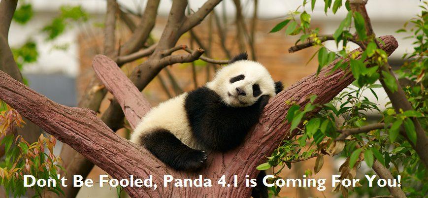 New SEO Update: Panda 4.1