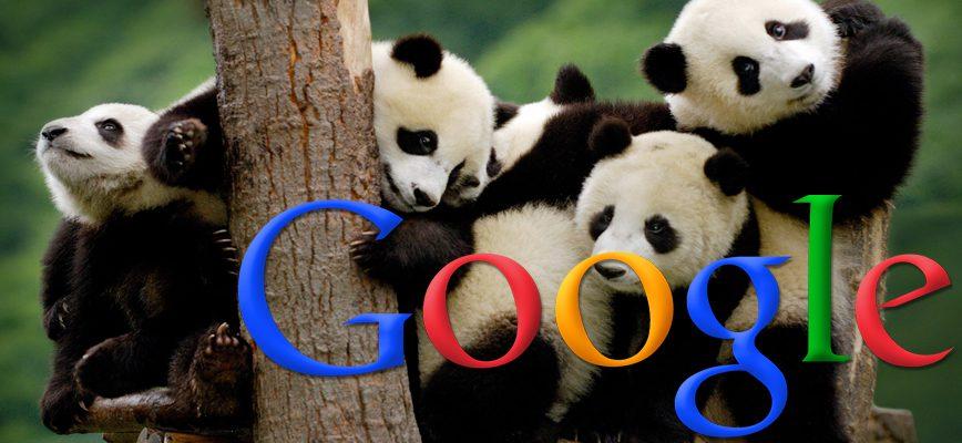 What is Panda?