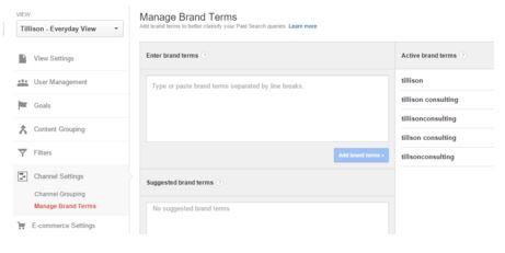 Segment Brand Terms in Analytics