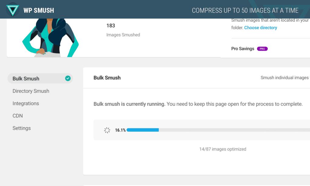 Smush - WordPress SEO Plugins - Tillison Consulting